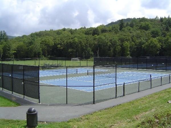 Lees-McRae College Men's Tennis
